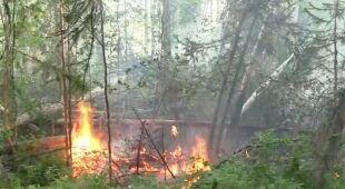 Próby ugaszenia pożaru na Syberii