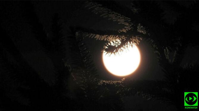 Pełnia Różowego Księżyca, a nawet superpełnia. Kiedy będzie można ją oglądać
