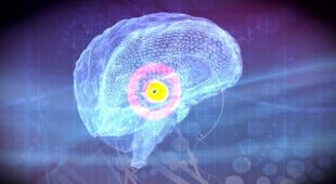 W taki sposób dochodzi do zakażenia mózgu człowieka przez amebę